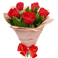 5 красных тюльпанов